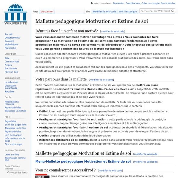 Mallette pedagogique Motivation et Estime de soi