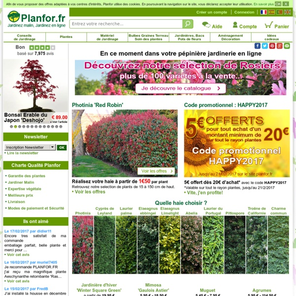 P pini re jardinerie en ligne planfor pearltrees for Jardineries en ligne
