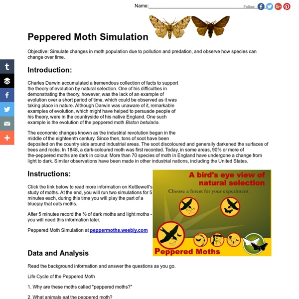 Collection of Peppered Moth Simulation Worksheet - ommunist