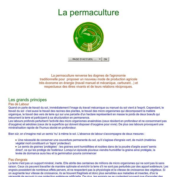 La permaculture : l'agriculture permanente