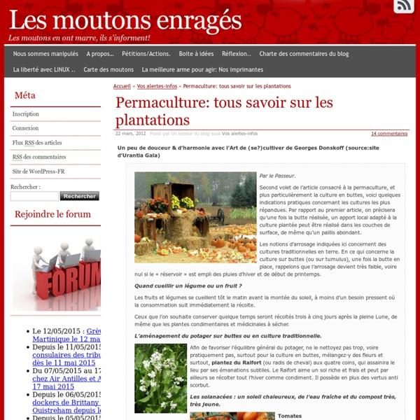 Permaculture: tous savoir sur les plantations
