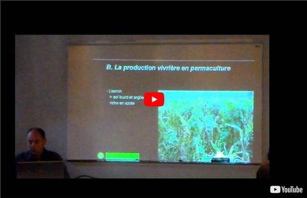 La permaculture et ses principes Partie 1