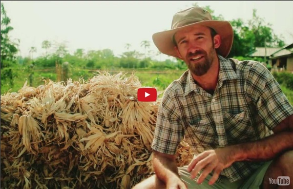 Seeds of Permaculture - Tropical Permaculture