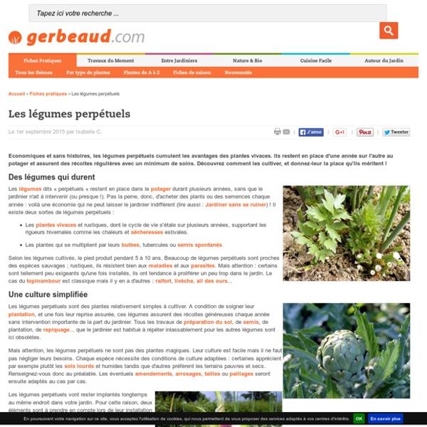 Légumes perpétuels : présentation, intérêt et conseils de culture