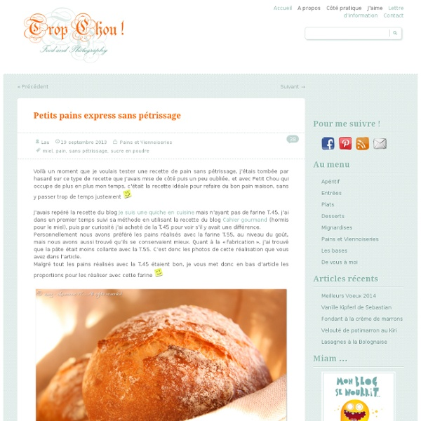 Trop Chou !Petits pains express sans pétrissage