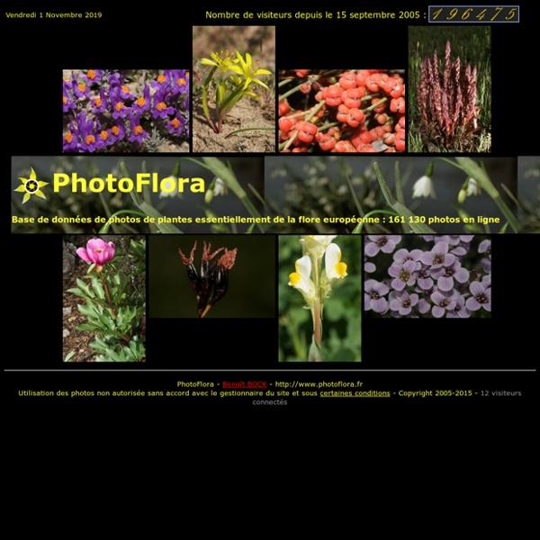 PhotoFlora