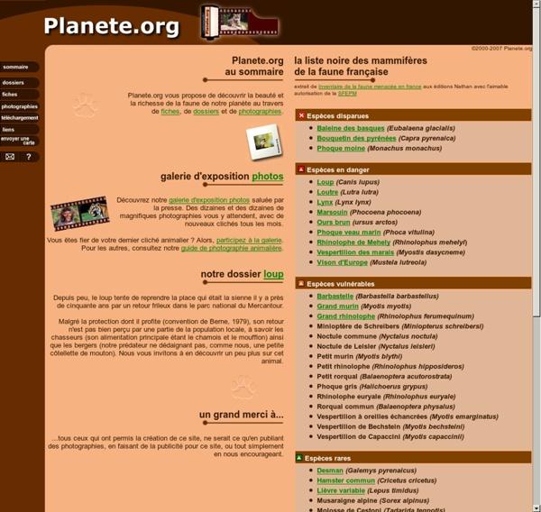 Planete.org - Galerie de photographies animalières - Animals pictures gallery