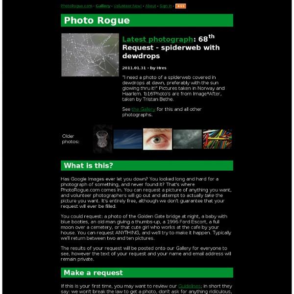 PhotoRogue.com - Request an Original Photograph