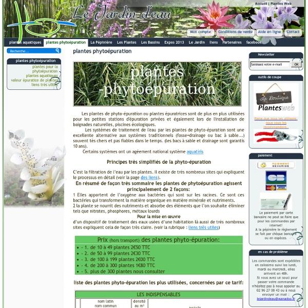 Plantes phytoepuration plantes épuratrices traitement de l'eau