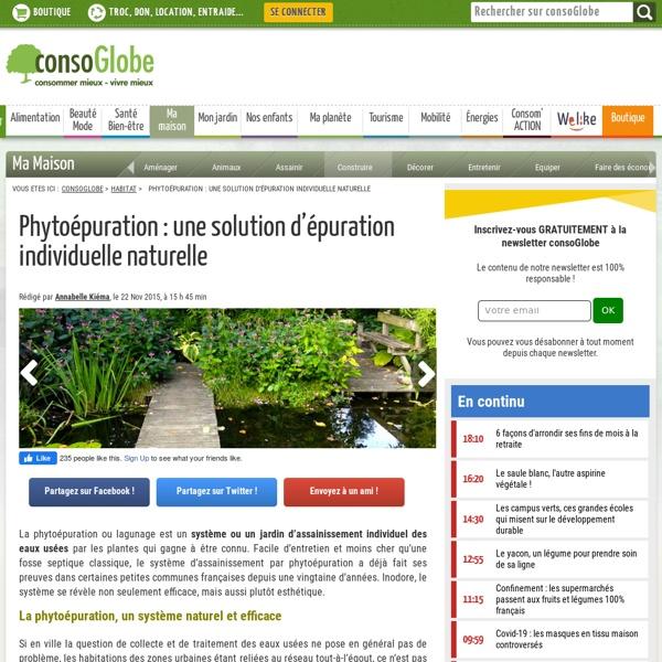 Phytoépuration : une solution d'épuration individuelle naturelle
