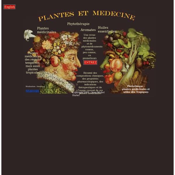 Phytothérapie : plantes médicinales, huiles essentielles. Médecine douce et médecine naturelle, pharmacologie, botanique, maladies et traitement