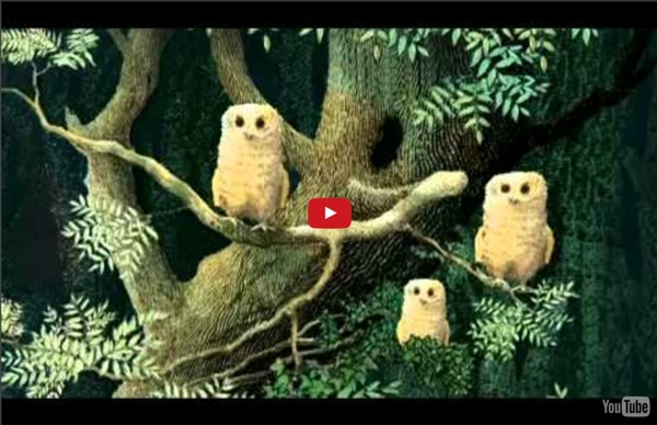 Owl Babies - Picture Book Animation