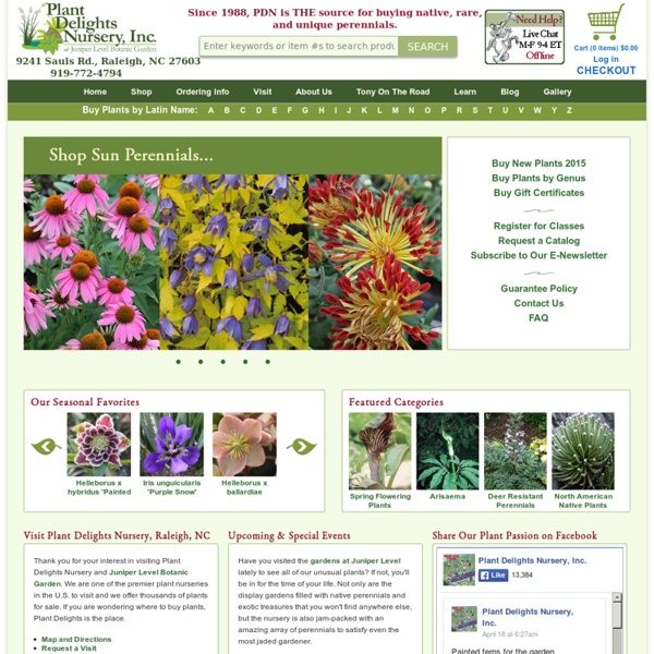 Plants on-line, Where to Buy Plants, New Plant,Shade Plants,New Plants,Plant Nurseries