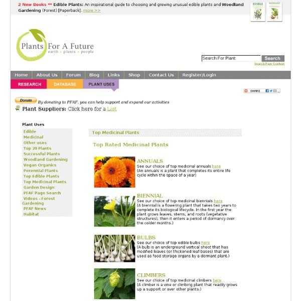 Top Rated Medicinal Plants