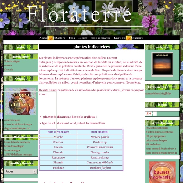 Plantes indicatrices - Floraterre