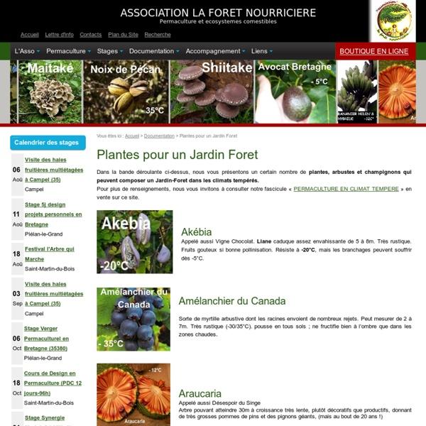 Plantes pour un Jardin Foret
