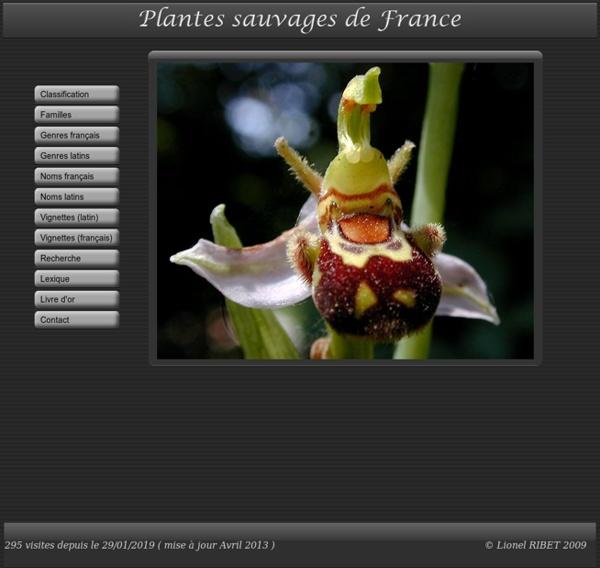 PLANTES SAUVAGES DE FRANCE