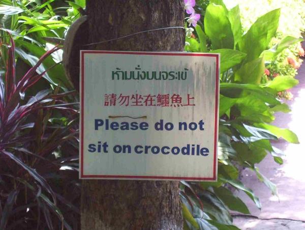 Please.dont.sit.on.crocodile.jpg (1632×1232)