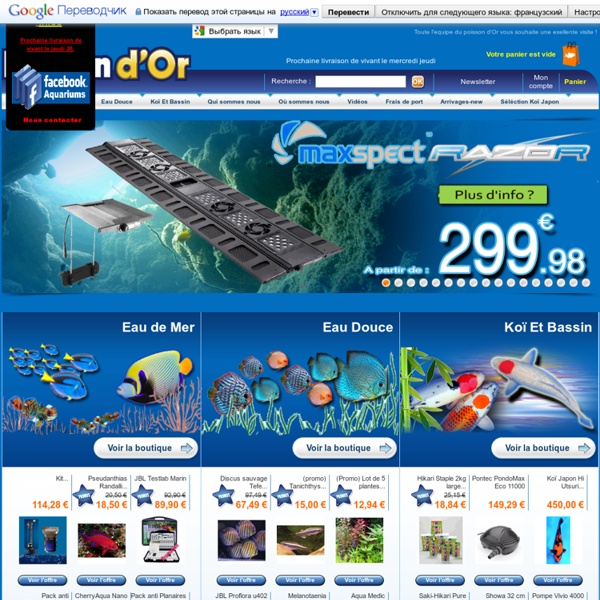 poisson d or vente en ligne aquariophilie pearltrees