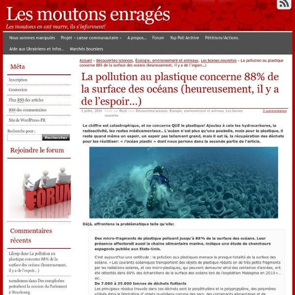 La pollution au plastique concerne 88% de la surface des océans (heureusement, il y a de l'espoir…)