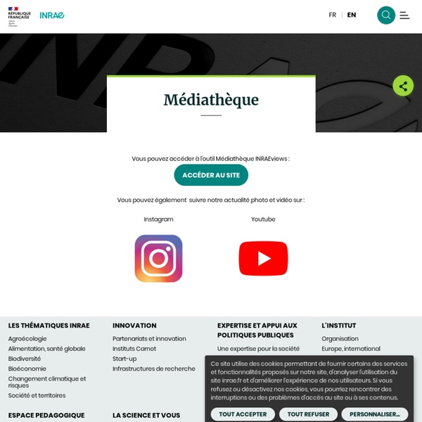 Yaourt, recettes Inra