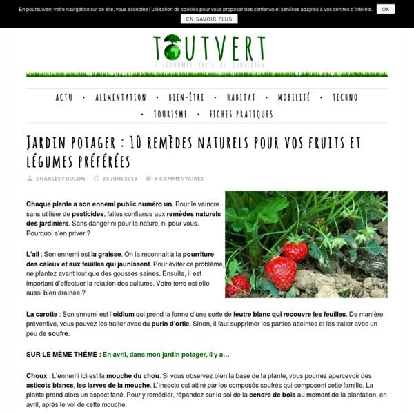 Jardin potager : 10 remèdes naturels pour vos fruits et légumes préférées