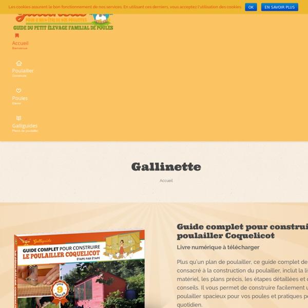 Gallinette : le guide du petit élevage familial de poules