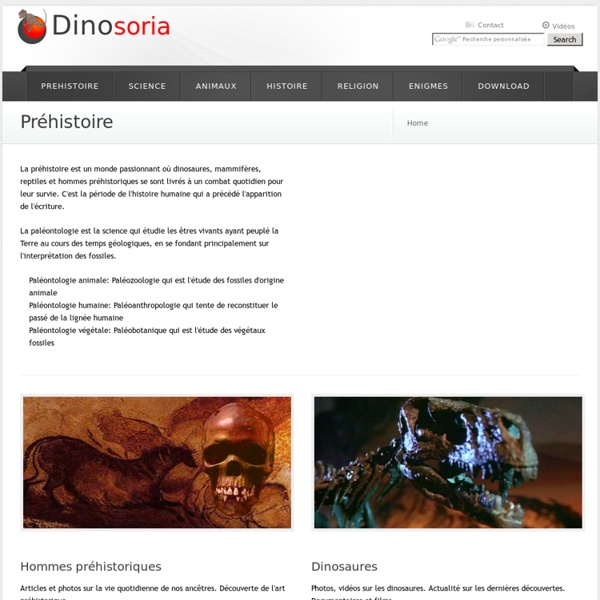 Préhistoire. Paléontologie. Fossiles. En Images
