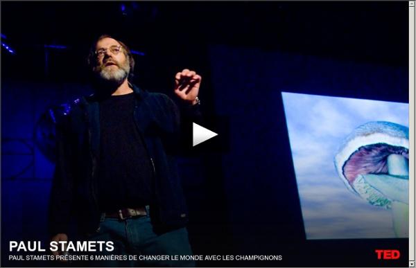 Paul Stamets présente 6 manières de changer le monde avec les champignons