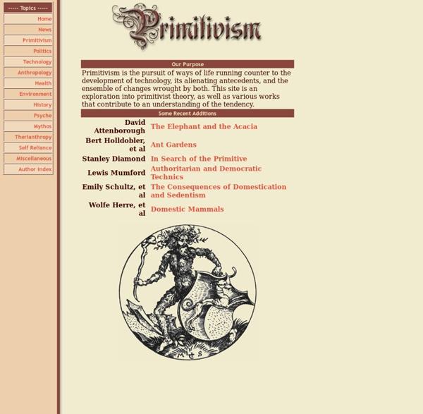 Primitivism