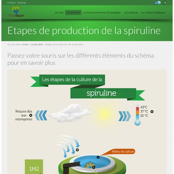 Etapes de production de la spiruline