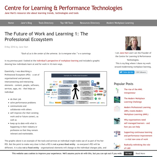 The Future of Work and Learning 1: The Professional Ecosystem