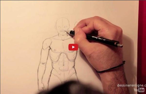 Les proportions du corps humain - le buste - Dessinerenligne.com