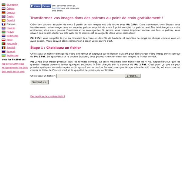 Faites vos propres patrons au point de croix sur internet - Pic 2 Pat