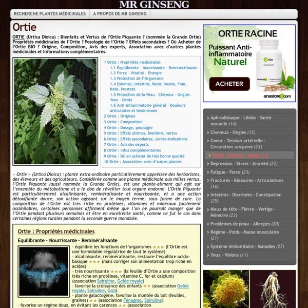 ORTIE (Urtica Dioica) : Propriétés, Bienfaits, Posologie ?