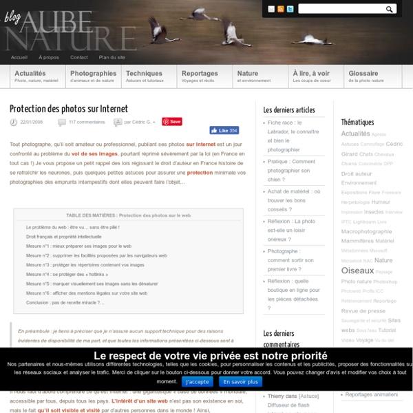 Protection des photos sur Internet : protéger ses photos