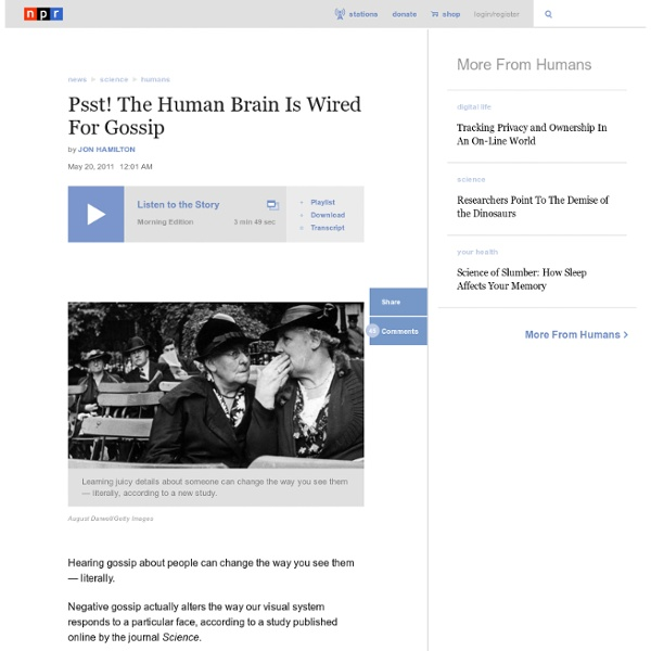Psst! The Human Brain Is Wired For Gossip