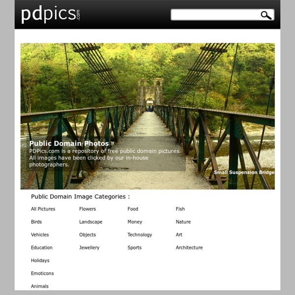 PDPics