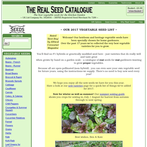 Great Vegetable Seeds from The Real Seed Catalogue