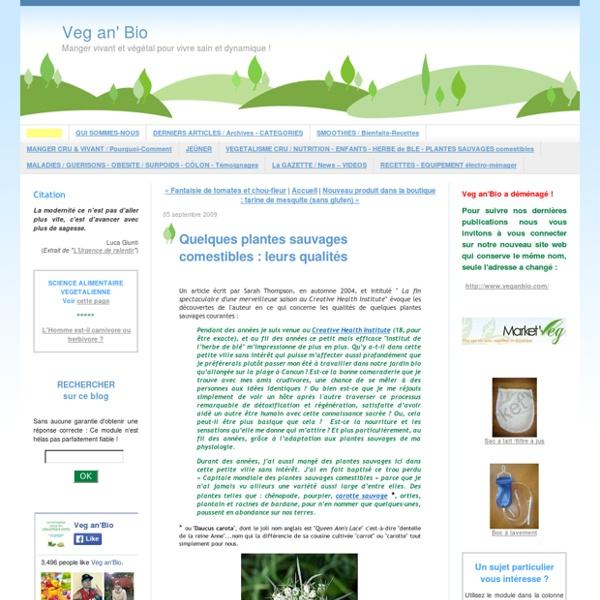 Quelques plantes sauvages comestibles : leurs qualités