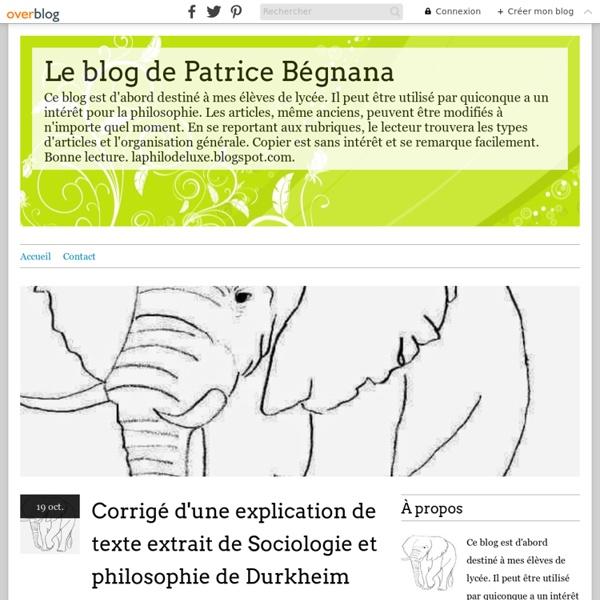 Le blog de Patrice Bégnana