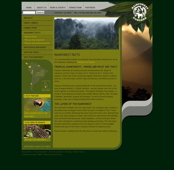 Rainforest Concern Facts