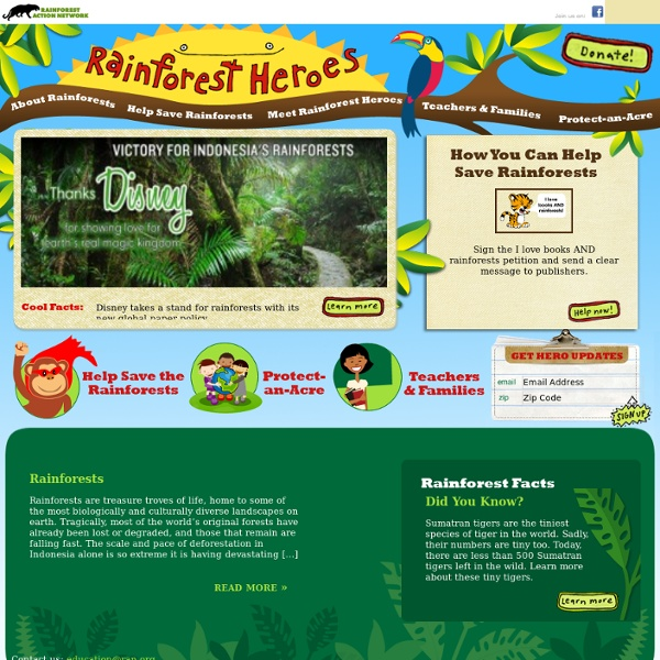 Rainforest Heroes