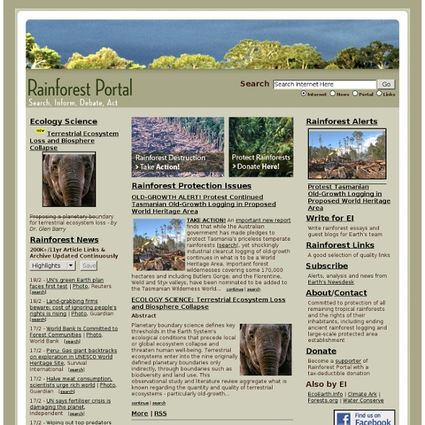Rainforest Portal