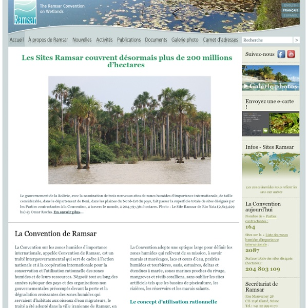 Ramsar : convention protection des zones humides