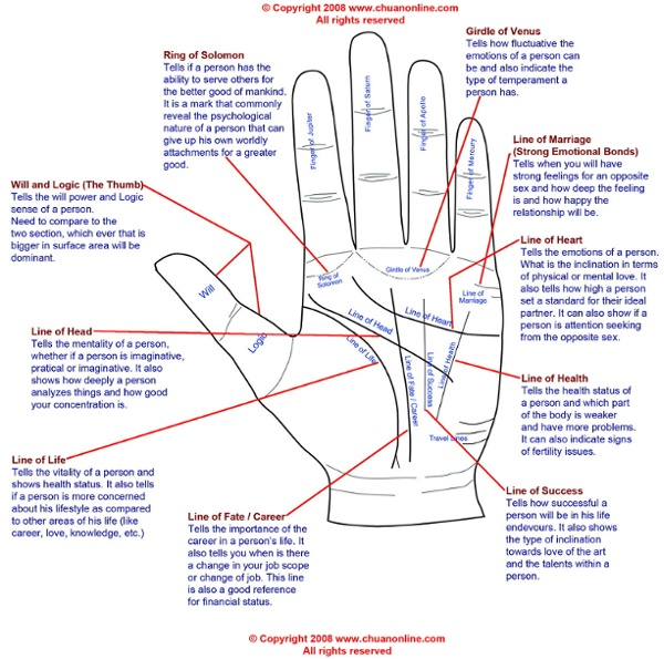 Palm reading diagram illustrated.jpg (1200×1191)