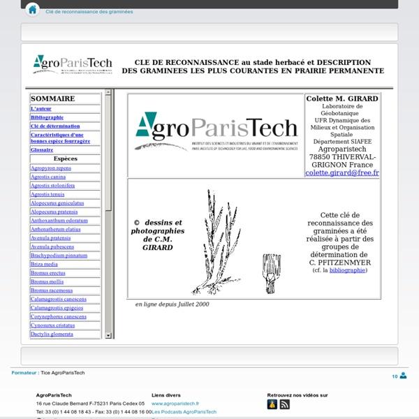 Clé de reconnaissance des graminées - CoursenLigne - AgroParisTech