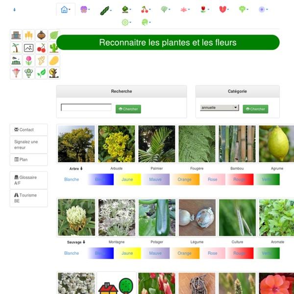 Identification de la faune et de la flore (> 20.000 photos, images) 9.000 variétés de fleurs, plantes, arbres, insectes