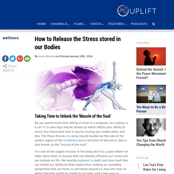 How to Release the Stress stored in our Bodies