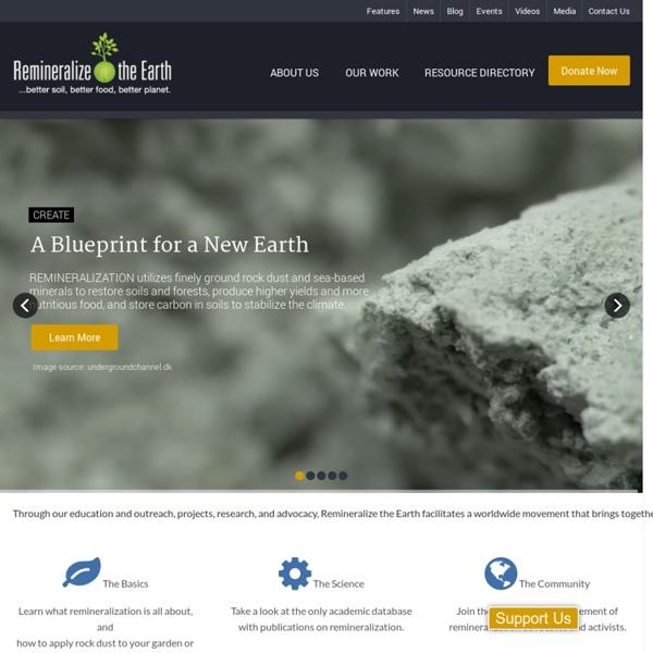 Remineralize the EarthRemineralize the Earth